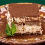 A slice of tiramisu