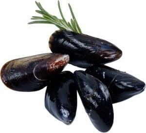 Carrabba's Mussles