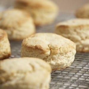 Sour Cream Biscuit