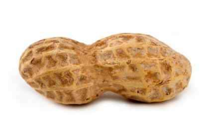 single peanut