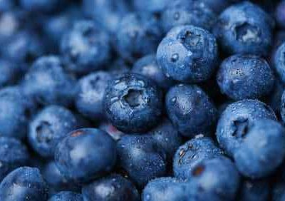 a bunch of fresh blueberries