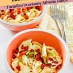 tortellini in creamy Alfredo sauce