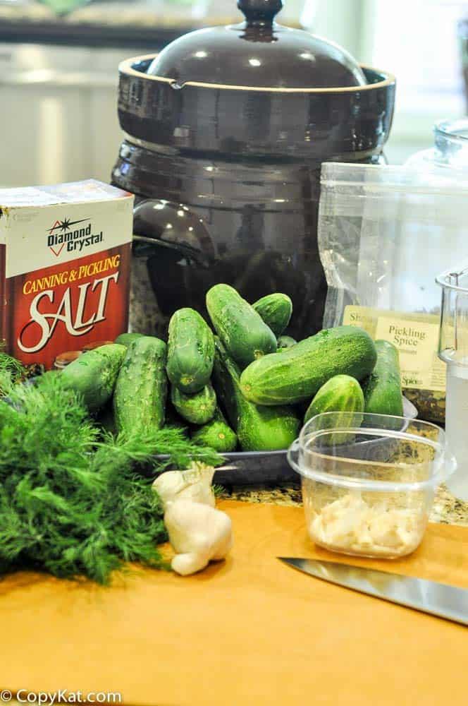 fermenting dill pickles