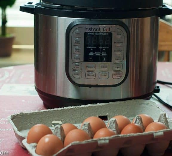 Should You get an Instant Pot?