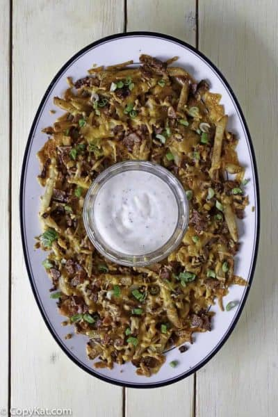 Homemade Cheddar's Texas Cheese Fries with ranch dip