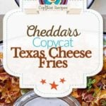 Cheddars Texas Cheese Fries Photo Collage