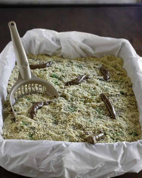 Kitty litter box cake with scoop.