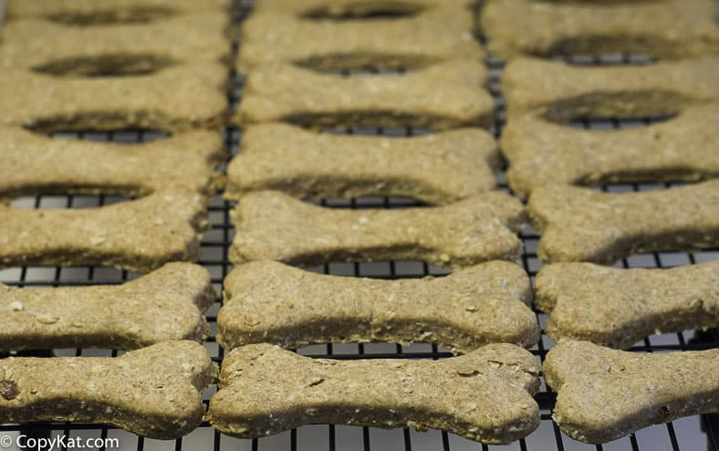 rows of cooked dog biscuits