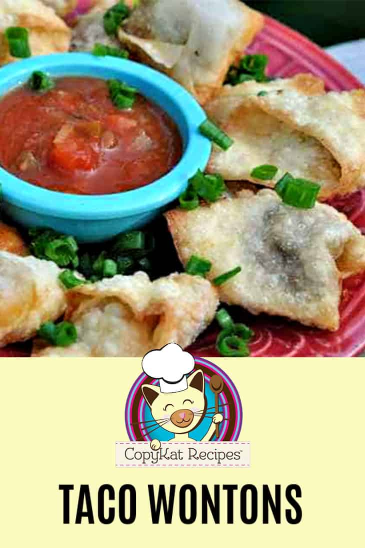 Taco wontons and salsa on a plate