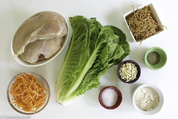 ingredients for grilled chicken asian salad