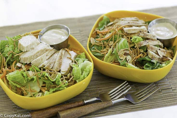 Two bowls of homemade appbleees grilled chicken oriental salad