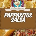 pappasitos salsa photo collage
