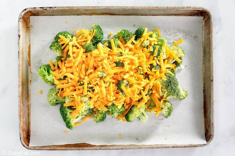 broccoli topped with cheese on a baking sheet