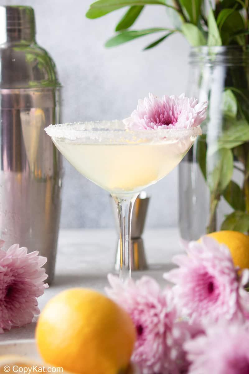 lemon drop martini garnished with a mum flower