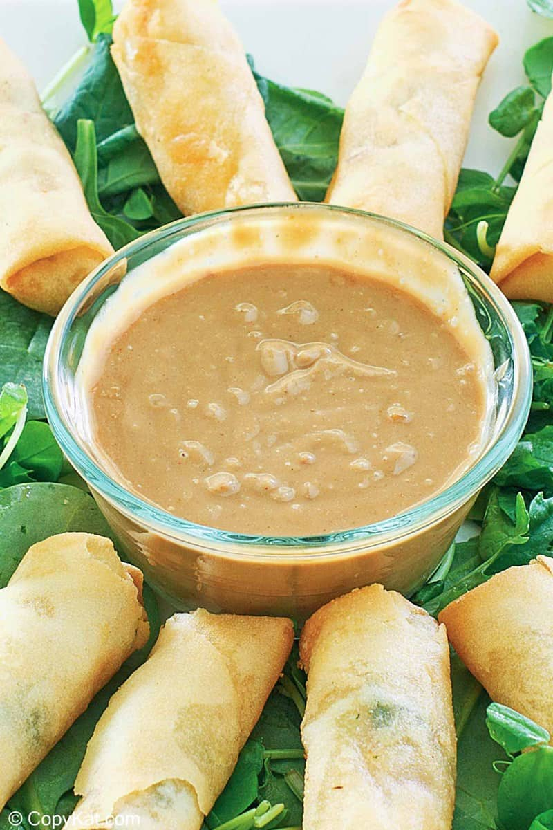 a bowl of Thai peanut sauce and spring rolls