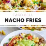 A bowl of nacho fries with jalapenos, tomatoes, and more.